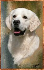 Golden Retriever A6 Blank Card No 11 by Starprint