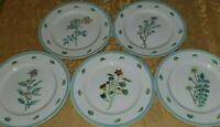 WILLIAMS SONOMA FLOWERING HERBS SET OF 5 DINNER PLATES 10 3/4""