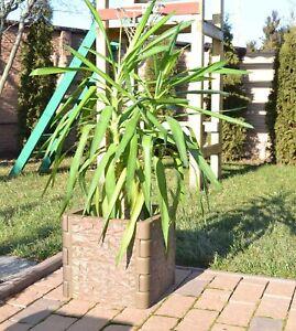 Verkauf steht eine Kunststoffform zur Herstellung von Gartenkästen und -säul F11