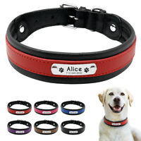 Personalized Leather Dog Collar Soft Padded with Nameplate Labrador Rottweiler