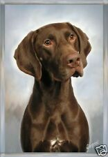 German Shorthaired Pointer Blank Card No 5 By Starprint