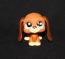Littlest Pet Shop LPS Brown BASSET HOUND #808 Blue Sun Eyes RARE Dog