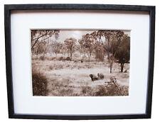 Peter Beard Original Framed Elephants Sepia Photograph