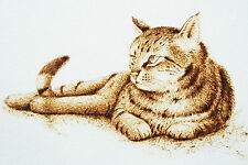 ORIGINAL ANIMAL ART- PYROGRAPHY/WOODBURNING DRAWING OF A SUNNING CAT ON PAPER