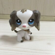Grey Mocha White Cocker Spaniel Puppy Dog LPS #2254 Figure LITTLEST PET SHOP