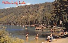 FALLEN LEAF LAKE Beach Scene Lake Tahoe, California-Nevada 1964 Vintage Postcard