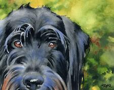 Black Labradoodle Watercolor Dog 8 x 10 Art Print by Artist Djr