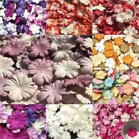 Carnation Flowers mulberry paper for Craft & D.I.Y Blossom card Red Pink Orange