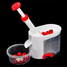 Cherry Olive Pits Pitter Stone Seed Remover Machine Corer Container Tool Plastic