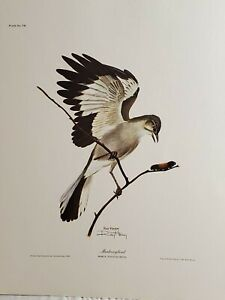 """Vintage """"Mockingbird"""" Ray Harm Signed Unframed Lithograph with Paperwork"""