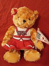 Disney High School Musical Plush Teddy Bear The Ice Tour Cheerleader