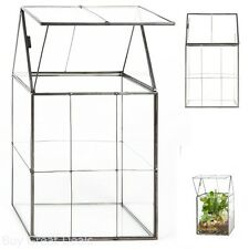 Garden Decor Glass Hinged Roof Terrarium Succulent Air Plants Box Pot Greenhouse