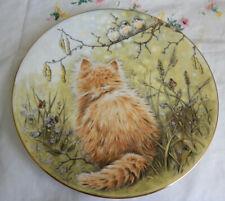 """Birdwatcher Plate Kitten Classics 8 1/4"""""""
