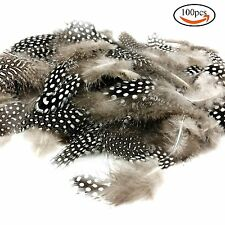 """100pcs 2""""-6"""" Natural Spotted Feathers DIY Craft Jewelry and Clothing Decoration"""