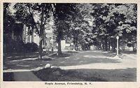 C44/ Friendship New York NY Postcard 1933 Maple Avenue Homes