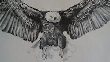 "Flying Eagle Vntg Art Print 17"" Long B&W Signed 1960s/70s Looks Very Fierce"
