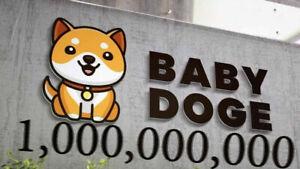 "1 Billion Baby Doge Tokens BEP-20 (BabyDoge) ""1,000,000,000"" CRYPTO"