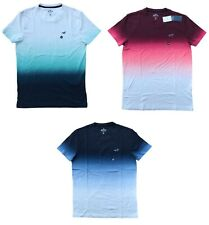 New Hollister  Ombre Mens Tshirt Icon Logo Graphic Tee All Sizes Free Shiping