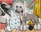 CHINESE CRESTED Introduction Original 11 x 14 Pastel Painting Dog Art KSams