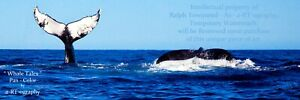 """""""Whale Tales"""" Humpback Whale C-B&W ArtPhoto, Dig-FILES, Prints, FrameReady LtEd+"""