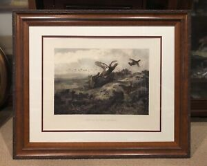 Vintage Archibald Thorburn 1900 Photogravure Etching Print PUT UP BY THE BEATERS