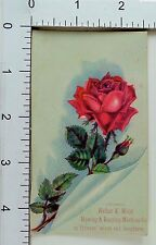 Walter A Wood Mowing & Reaping Machine Co Red Rose Image F64