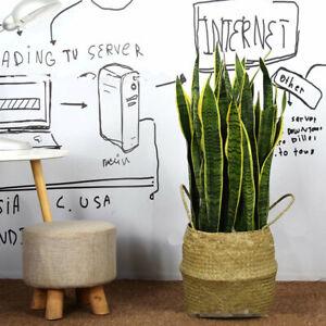 "Artificial Snake Plant 63cm / 24.8"" Fake Sansevieria Indoor/Outdoor Decoration"