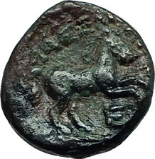 ALEXANDER III the GREAT Lifetime 336BC Ancient Greek Coin APOLLO & HORSE i66257
