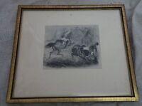 alte Grafik Stahlstich Militär zu Pferd