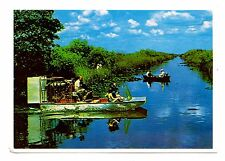 Airboating Florida Everglades Postcard Air Boat Popular Outdoor Activity
