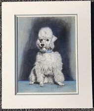 C1940 Pastel Portrait Of Maltese Dog. Signed Gladys Emerson Cook.