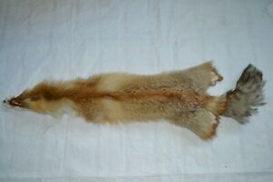 1PC Tanned Red Fox pelt, ideal for sewing, soft tan, great value #2 IN200