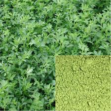 Alfalfa powder, organic, soap making supplies, herbal extracts.