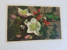 Greeting Postcard Vintage  Viscum Album 1 Ct US Stamp