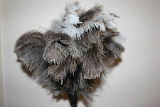 One Xlarge soft floss ostrich feather duster 90cm white plastic  handle