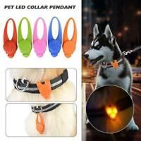 LED Pet Dog Cat Collar Nite Night Light Safety Clip Flashing Neon Pendant JT