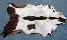 "C Grade GOAT Western taxidermy Hide Rug Natural Fur Goat Hide 35263 (38""X 27"" )"