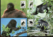 4 Maxi-Cards Affen, Guatemala Brüllaffen,Belize   15/1/14