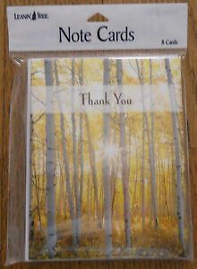 8 Leanin Tree Note Cards THANK YOU, Sun Shining Through Trees in the Woods, USA