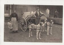 Switzerland Dog Cart / Milk Cart Milchkarren Vintage Postcard 646b