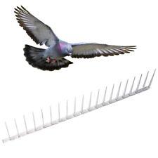 PEST-X Plastic Polycarbonate Bird Spikes - Humane Pest Control Pigeon 60cm Piece