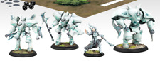Retribution of Scyrah Battlegroup Warmachine  Miniatures ONLY