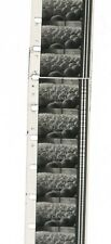 "16mm Film Print ""The Hutterites"", 1964, 28 mins, dir: Colin Low, Anabaptism"