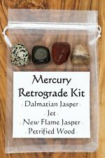 Mercury Retrograde Crystal Set Dalmatian New Flame Jasper Jet Petrified Wood