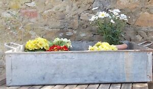 galvanised trough, tray,vintage,French,plant display,garden,conservatory,storage