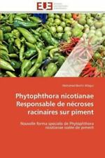 Phytophthora Nicotianae Responsable De N?croses Racinaires Sur Piment: Nouvel...
