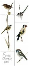 British Songbirds 5 card pack blank cards by Gareth Watling FREE P&P