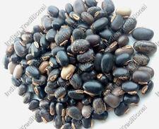 Bulk Mucuna Pruriens Seeds Black Brown Kauch Velvet Bean Kapikachhu Cowhage Seed