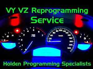 VY VZ HOLDEN COMMODORE INSTRUMENT CLUSTER DASH PROGRAMMING SERVICE HSV VT VX V8