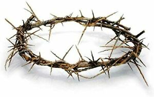 Crown of Thorns Jesus Authentic Replica from Jerusalem with Printed Certificate